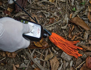 Scent drags can be especially useful for bringing bucks closer in areas where competition for does is intense. (Photo courtesy of Tink's)