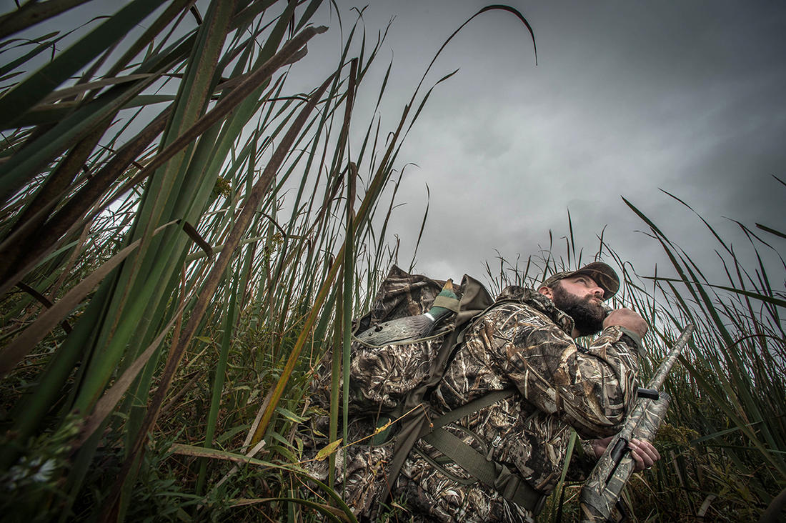 Whistling wings, distant honks and other waterfowl sounds grab your attention and put you on alert. Photo © Banded