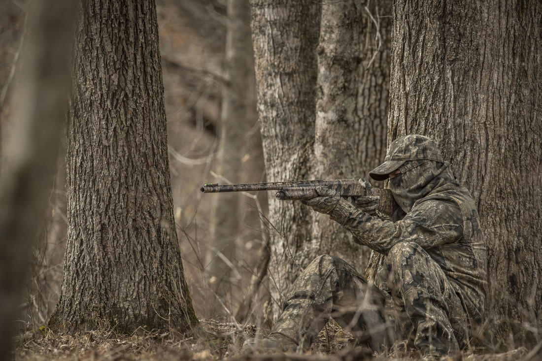 You've still got a fall turkey tag and want to fill it now. (© Bill Konway photo)
