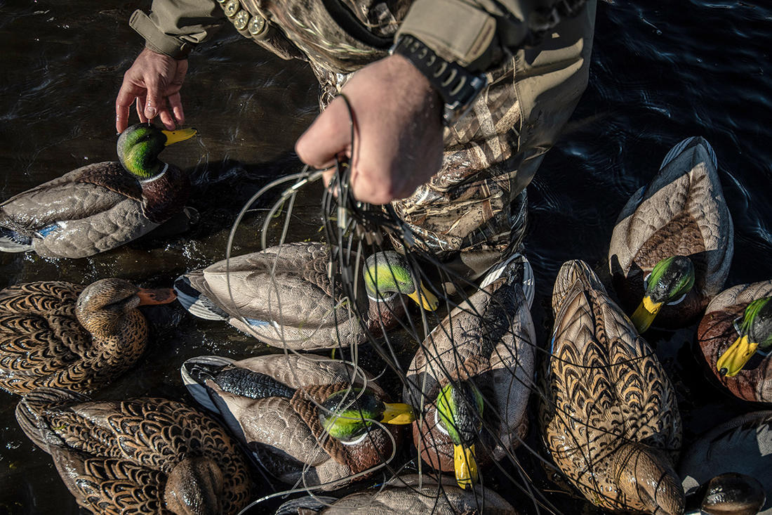 Decoy placement can make or break a hunt. But some days, good fortune covers up your mistakes. Photo © Forrest Carpenter