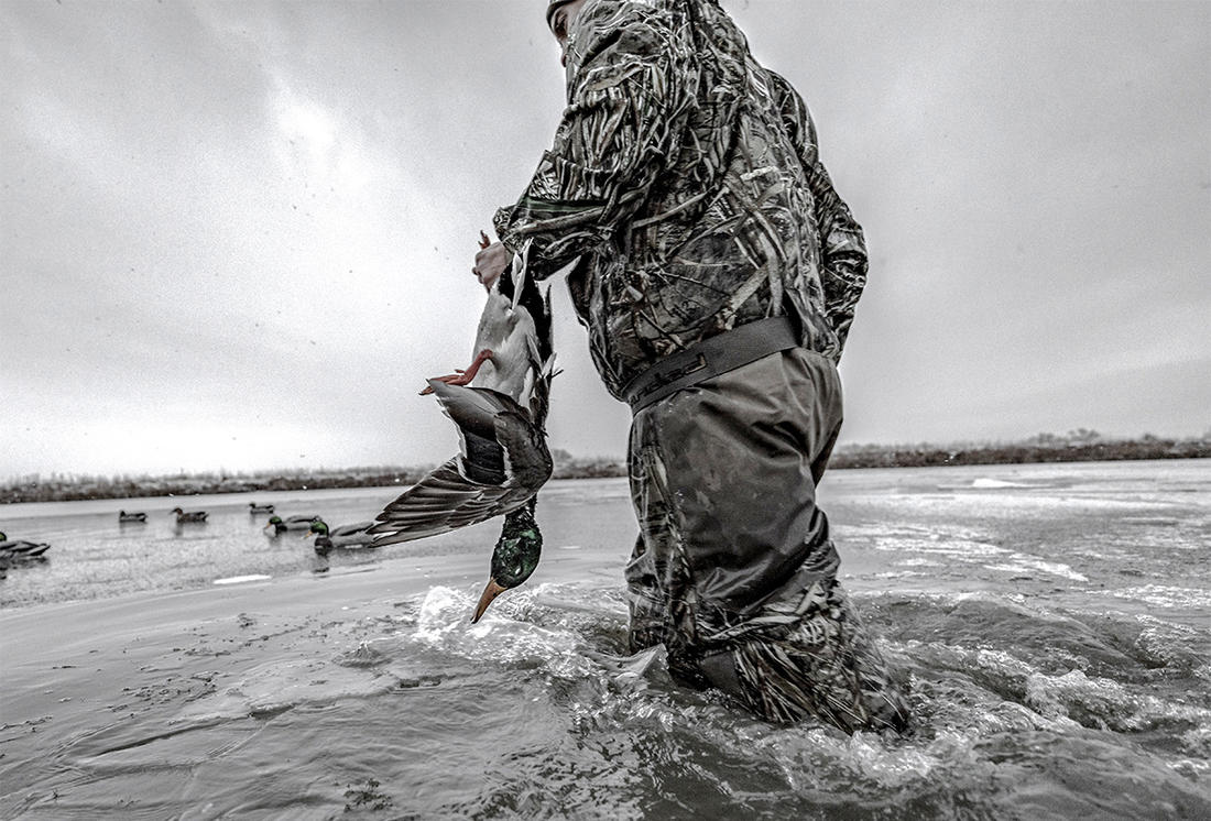 Some folks believe cloudy, rainy days are great for duck hunting. Most hunters believe otherwise. Photo © Nick Costas