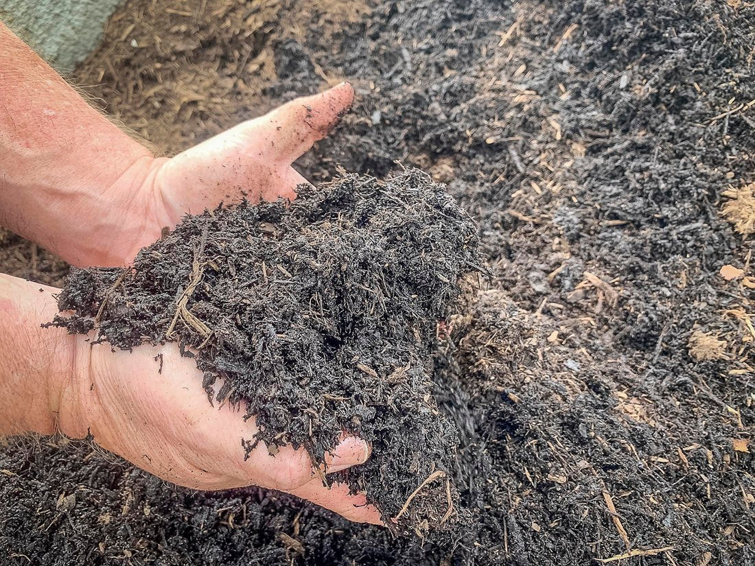 Compost made from horse manure and stall bedding is rich in nitrogen. (C. Pendley photo)