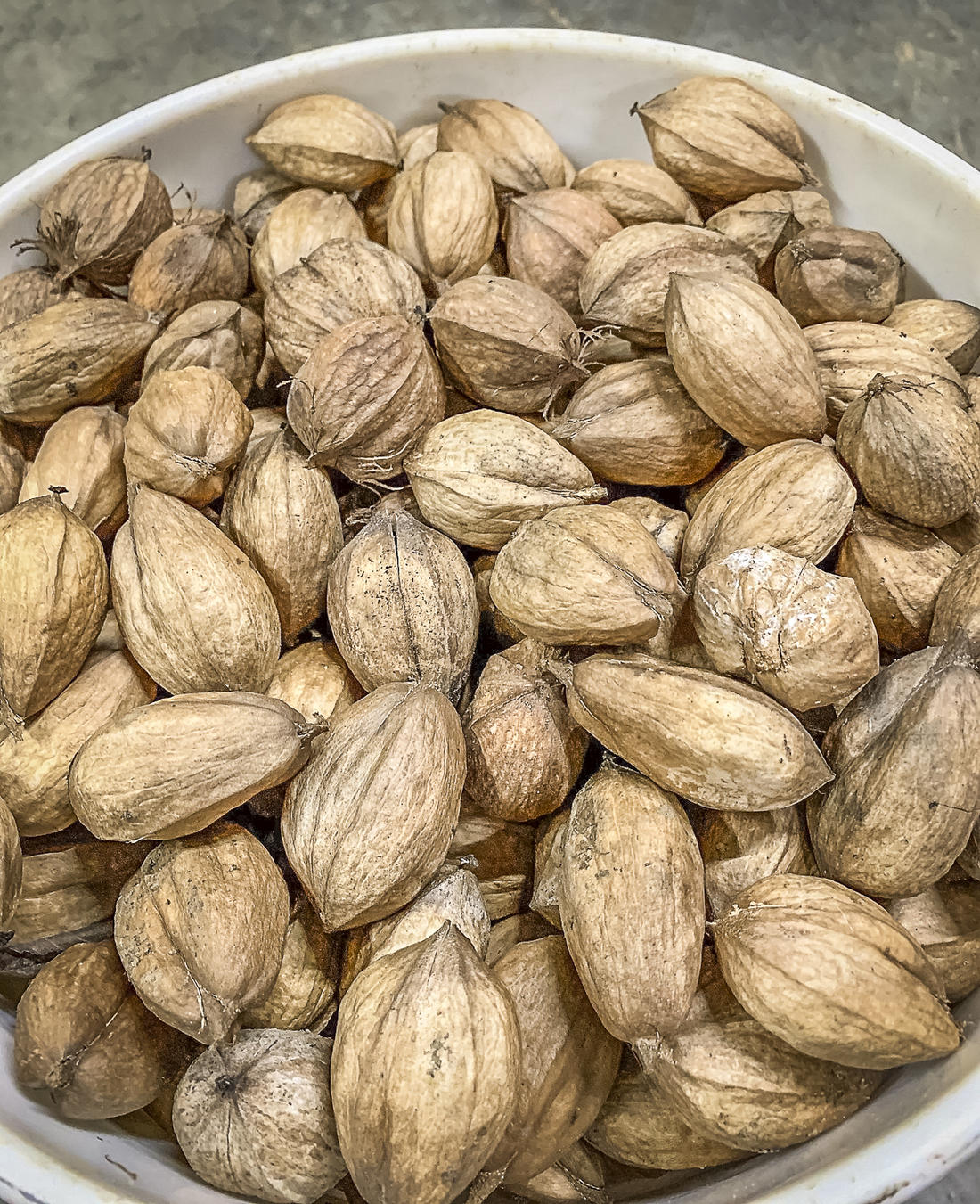 Store the hulled nuts in a 5-gallon bucket or other lidded plastic container.