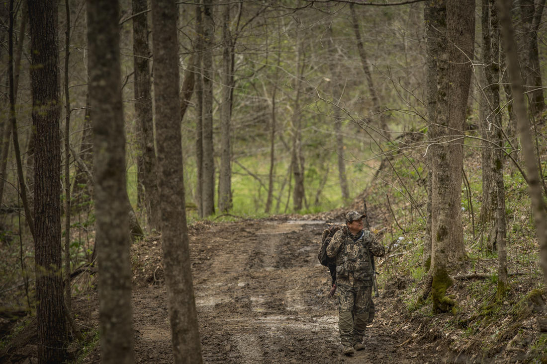 Kentucky has some of the best turkey hunting in the country. Read on ... (© Bill Konway photo)