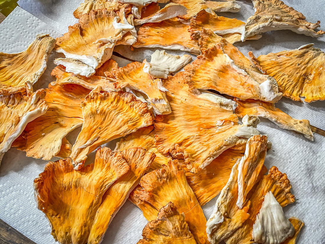 Brush off any dirt and debris, then rinse the mushrooms and pat them dry before packaging.