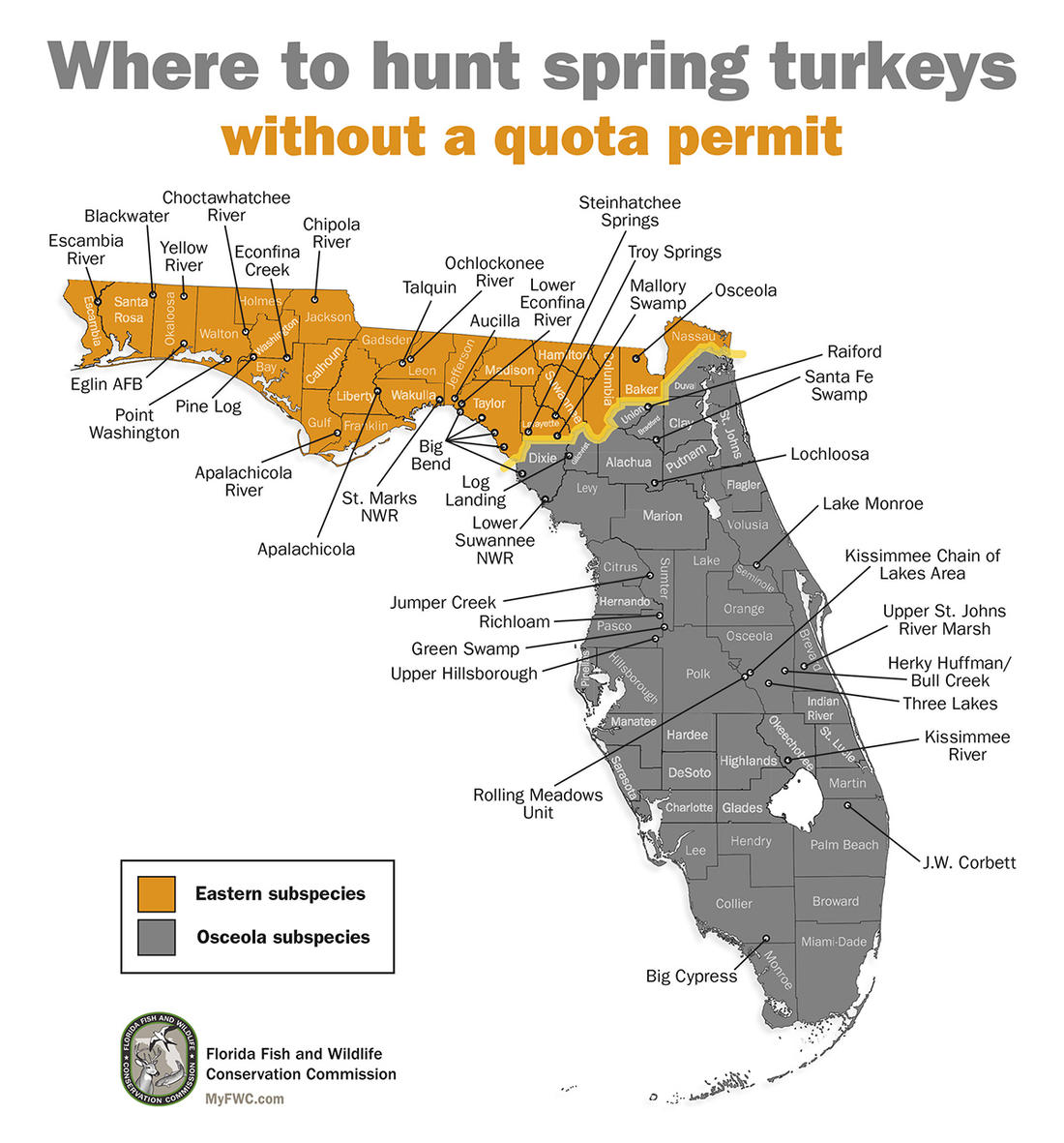 Some public lands allow spring turkey hunts with a quota permit; some without it. Image by Florida Fish and Wildlife Conservation Commission