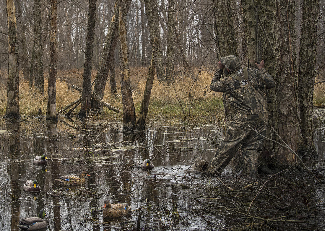 Scenes from flooded green timber might be the most iconic Mississippi Flyway waterfowling images. Photo by Bill Konway