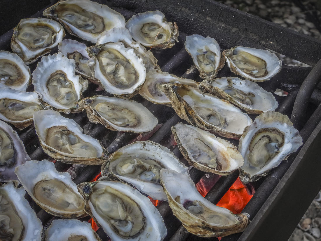 Place the shucked oysters directly on a hot grill.