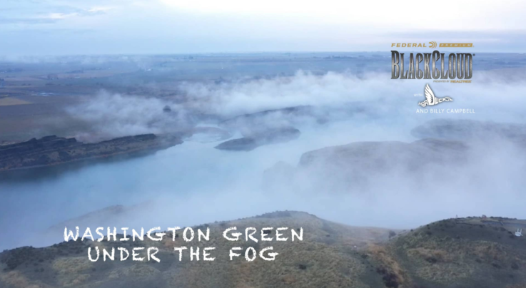 Black Cloud on Realtree 365 — Bonus Hunt: Mallards Fall from the Fog Preview Image