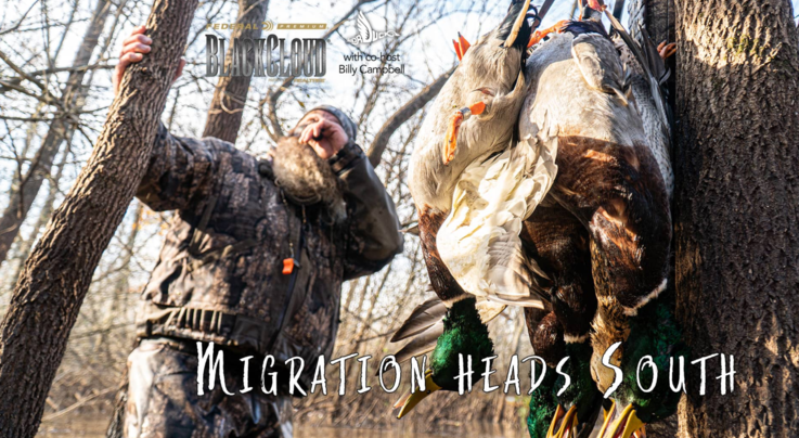 Realtree 365, Black Cloud: Migration Heads South Preview Image