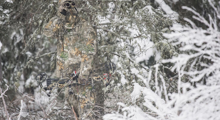 5 Bad Excuses for Unfilled Deer Tags Preview Image