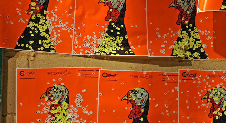 5 Excuses and the Truth: Why You Missed Turkeys This Season   Preview Image