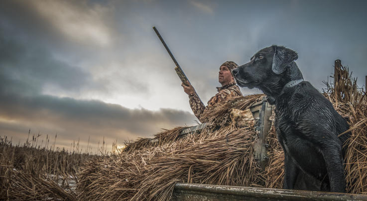 Waterfowling by the Numbers Preview Image