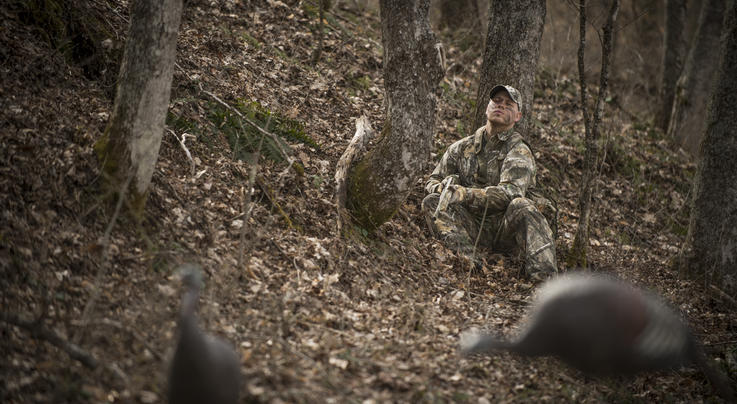 Have You Learned These Things from Missing Turkeys? Preview Image