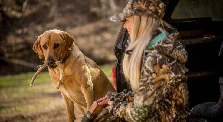 Find Land: 7 Ways to Get Permission to Hunt Private Property Preview Image