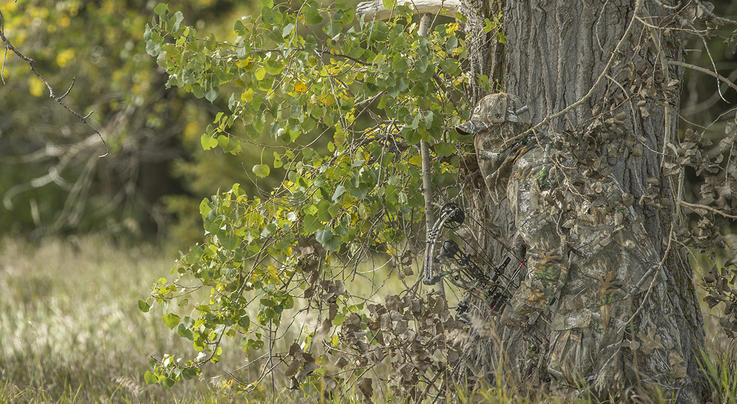Is Public Land Deer Hunting Really That Bad?  Preview Image
