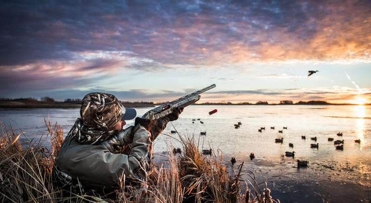 3 (More) Duck Hunting Shots That Will Fool You Preview Image