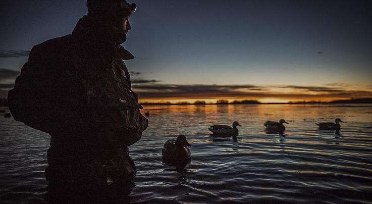 DIY Planning Tips for Out-of-State Waterfowl Hunts Preview Image