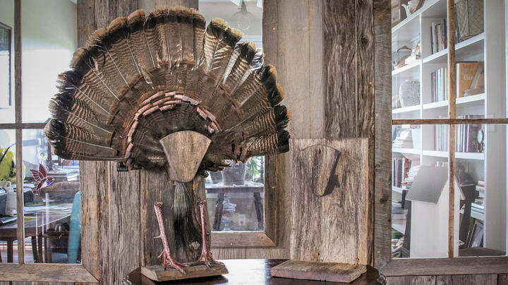 How to Build a Tabletop Turkey Fan Display  Preview Image