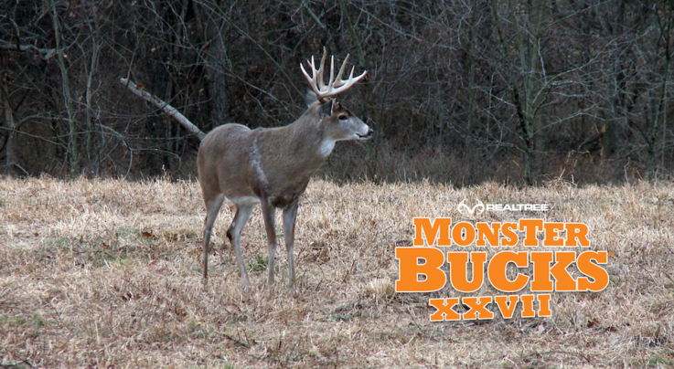 Monster Bucks 27: Jason Aldean Arrows a Kansas Stud Preview Image