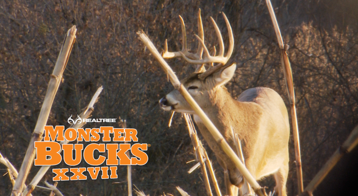Monster Bucks 27: Kandi Kisky Takes a Huge Thanksgiving Deer Preview Image