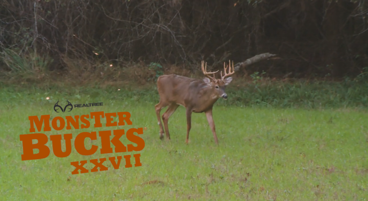 Monster Bucks 27: Colton Jordan Tags a Nice Georgia Deer Preview Image