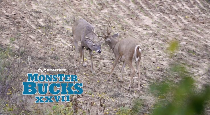 Monster Bucks 27: A Giant Oklahoma Whitetail with a Bow Preview Image