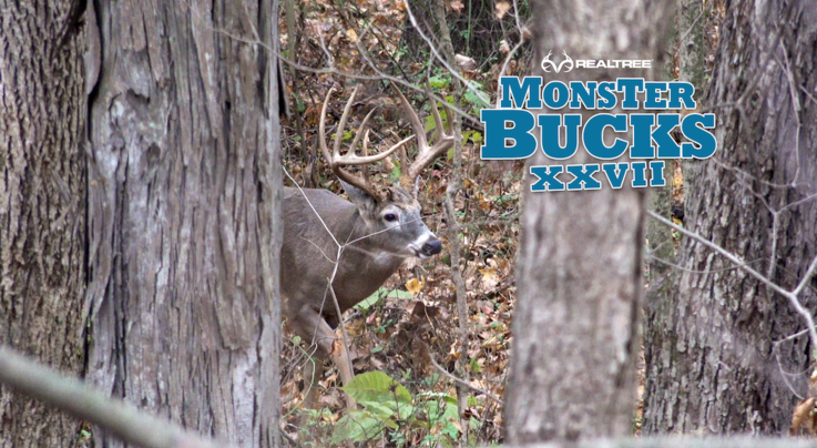 Monster Bucks 27: Krysten McDaniel Bowhunts a Giant Indiana Typical Preview Image