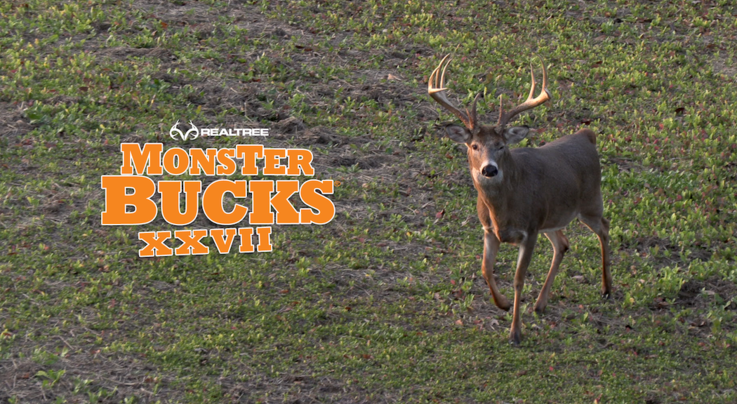 Monster Bucks 27: Phillip Culpepper Hunts a Big Iowa Buck Preview Image