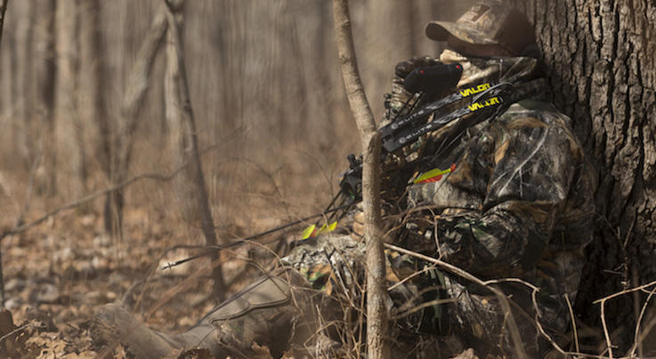 5 Reasons to Buy the New Elite Valor Budget Bow Preview Image