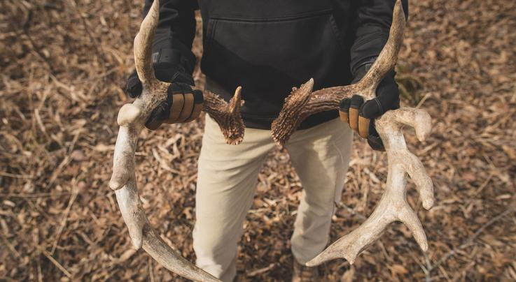 5 Expert Shed Hunting Tips You Should Follow Preview Image