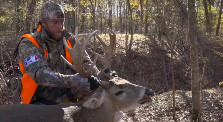 Unreal Mass on Giant Southern Buck Preview Image