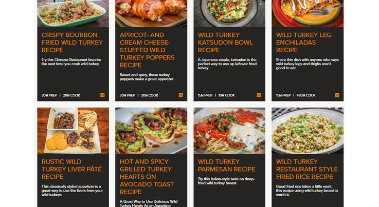 Great Wild Turkey Recipes Preview Image
