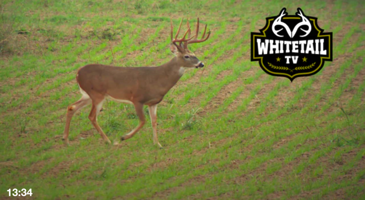 Realtree 365: Last-Minute Prep, Unforeseen Challenges and Giant Whitetails Preview Image