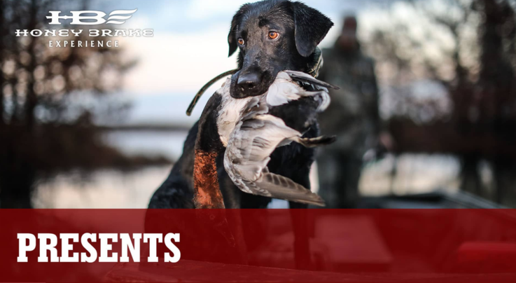 Realtree 365: Incredible Late-December Duck Hunts Preview Image