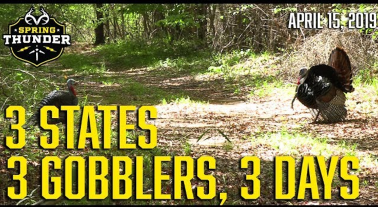 Spring Thunder: 3 States, 3 Gobblers, 3 Days  Preview Image