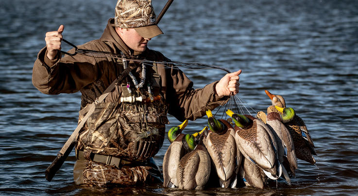 Five Proven Duck Decoy Rigs Preview Image