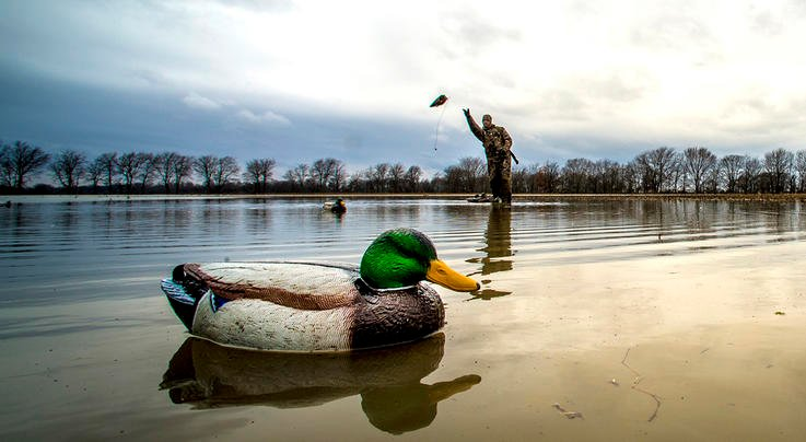 Quick Field Fixes for Keeping Decoys Looking Lively Preview Image