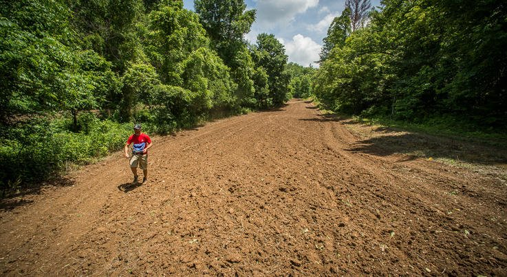 5 Terrible Food Plot Plants Preview Image