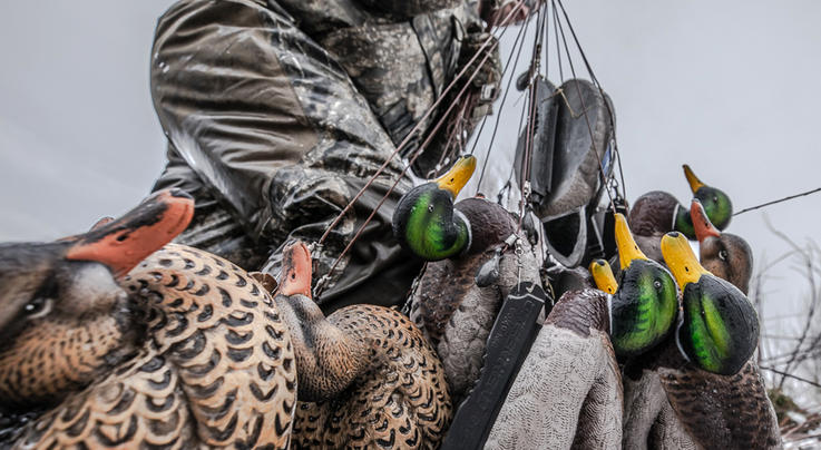 Duck Hunting Decisions Revisited Preview Image