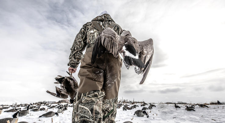 Six Things to do Before Duck Season Ends Preview Image