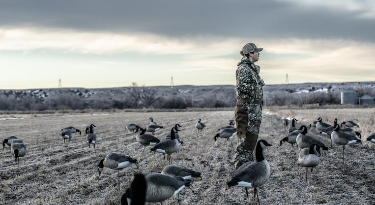 Plan B Options to Save Your Duck and Goose Hunts Preview Image