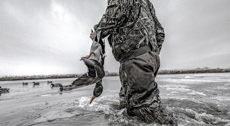 5 Duck Hunting Myths That Must Die Preview Image