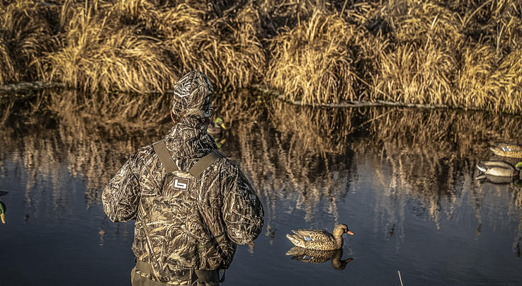 Feds Implement Delta Waterfowl's Working Wetlands Program Preview Image