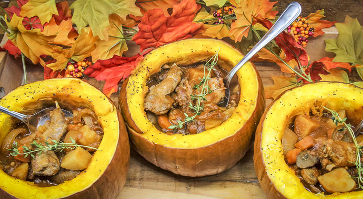 Squirrel and Pumpkin Slow Cooker Stew Preview Image