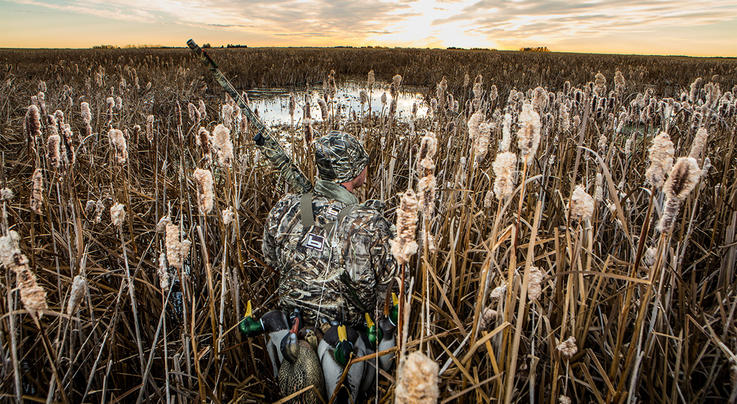 Delta Waterfowl Video: Habitat Conservation — The Delta Waterfowl Way Preview Image