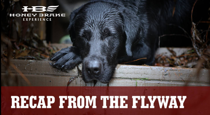 Realtree 365: A Duck Season for the Ages, and Selecting the Right Choke Preview Image
