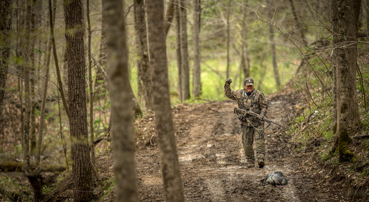 How to Hunt Turkeys that Won't Gobble  Preview Image
