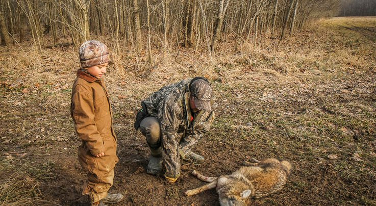 10 Coyote Trapping Mistakes Beginners Make Preview Image