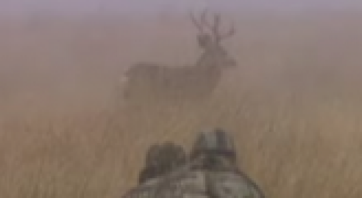 David Blanton crawls for a muley Preview Image